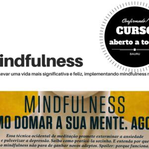 Curso de Mindfulness para Leigos em Bauru